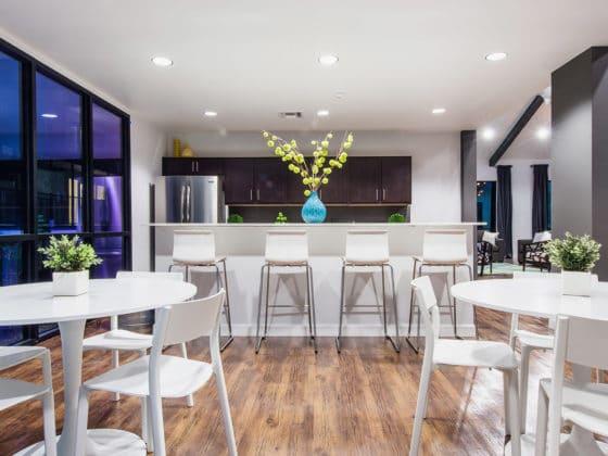 Treehouse Apartment Tucson Interior